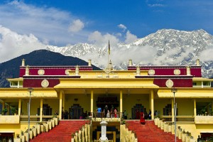 L'université Tantrique de Gyuto, non loin de Dharamasala, au pied des montagnes Himalayennes.