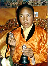 Ogyen Trinley Dorje, Le 17ème Karmapa