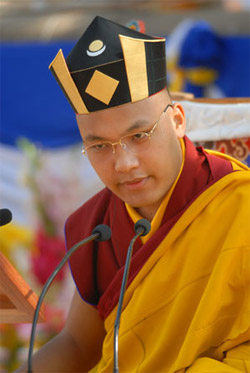 Sa Sainteté le Dix Septième Karmapa, Le Détenteur de la lignée Karma Kagyu